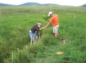 Ann and John installing data-logging thermistors in Jaramillo Creek.